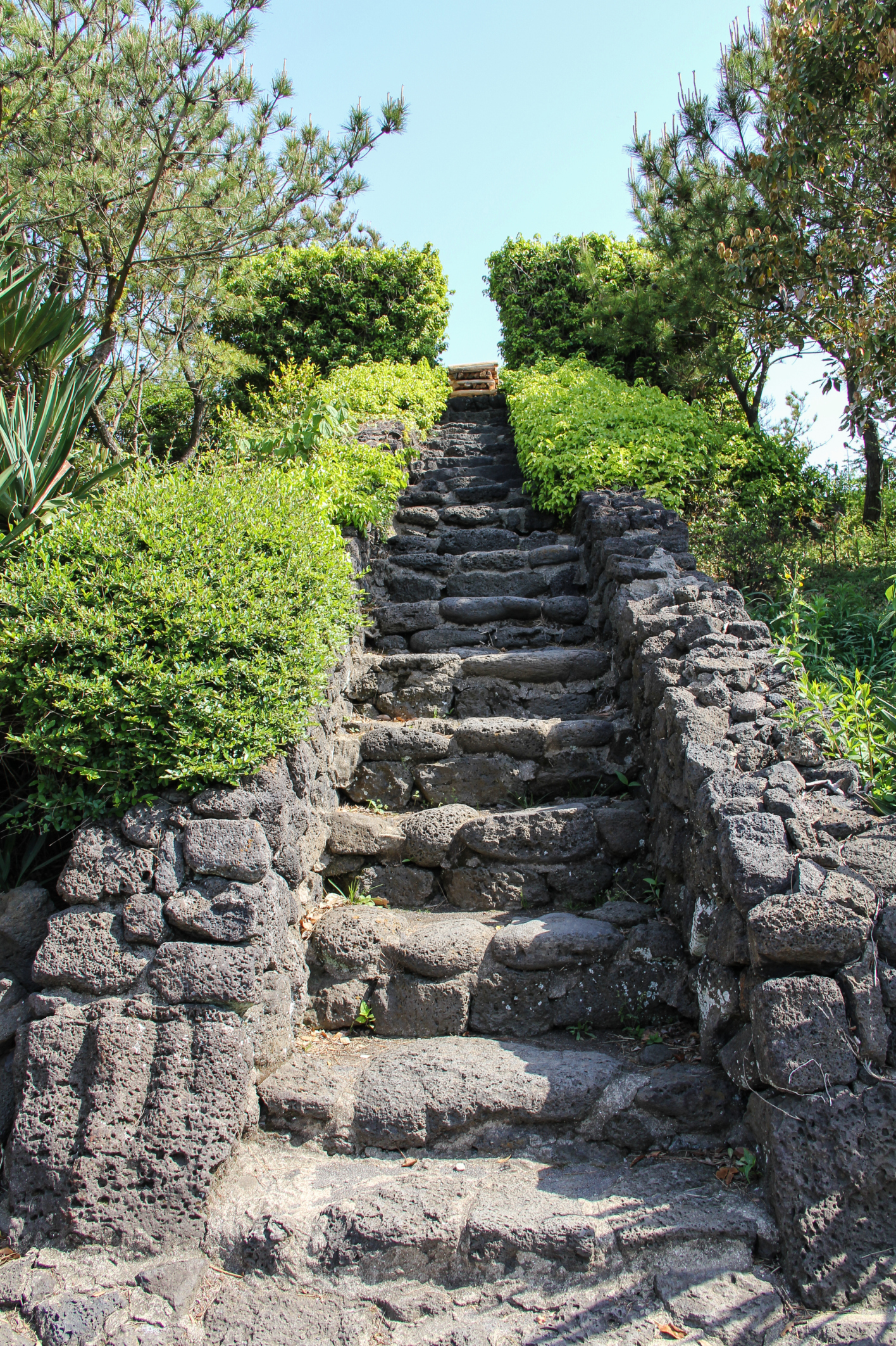 Twelve Steps | Clearbrook Treatment Centers