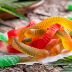 """New Jersey """"Candy"""" Drug Ring Makes for A Sweet Drug Bust"""