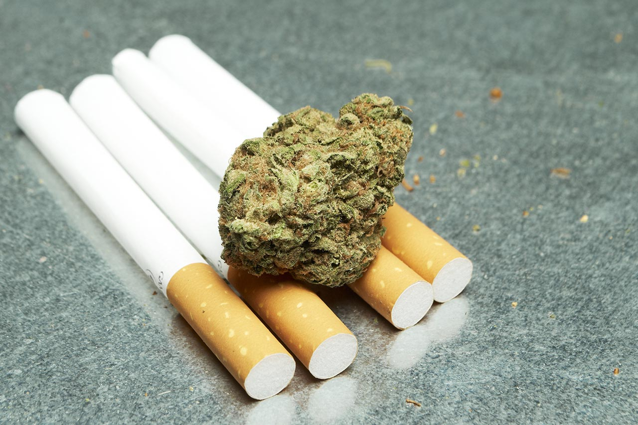 Difference Between Marijuana and Tobacco